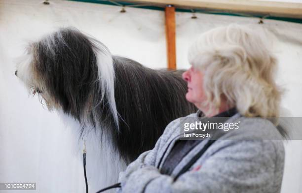 The owner of an Old English Sheepdog stands with her dog inside a tent during 152nd the Ryedale Country Show on July 31 2018 in Kirbymoorside England...