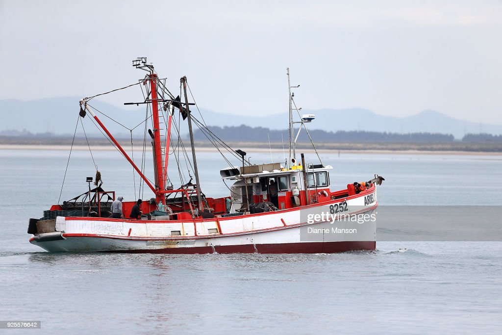 2018 Oyster Season Begins In Bluff : News Photo