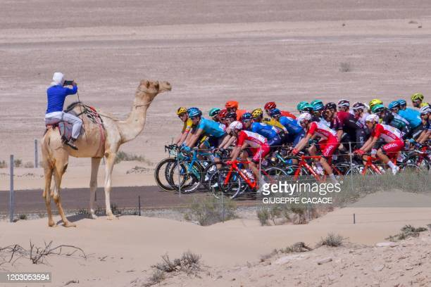 The pack rides during the third stage of the UAE Cycling Tour from al-Maroom to Jebel Hafeet, on February 24, 2020.