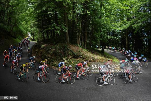 The pack rides in curves through a wood during the seventh stage of the 71st edition of the Criterium du Dauphine cycling race 5 km between...