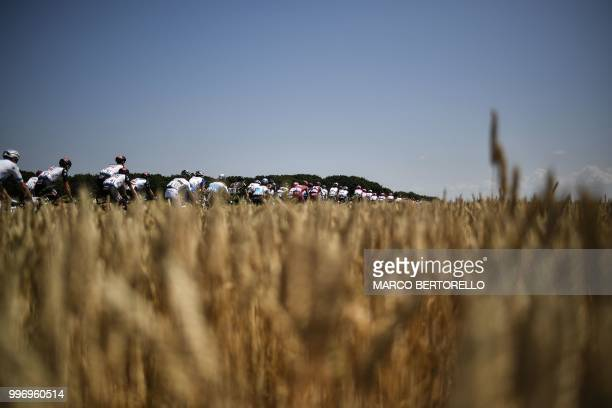 TOPSHOT The pack rides past wheat fields during the sixth stage of the 105th edition of the Tour de France cycling race between Brest and...