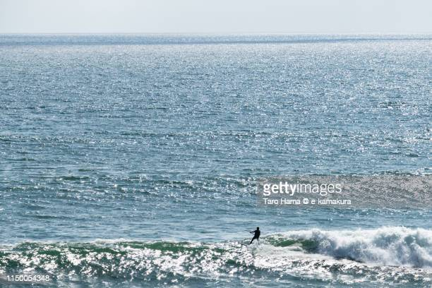 The paddle boarder on the beach in California