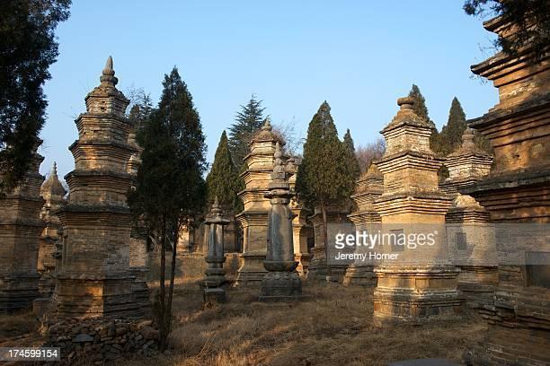 MONASTERY ZHENGZHOU HENAN CHINA The Pagoda Forest at Shaolin Monastery or Shaolin Temple a Chan Buddhist temple on Mount Song near Dengfeng Zhengzhou