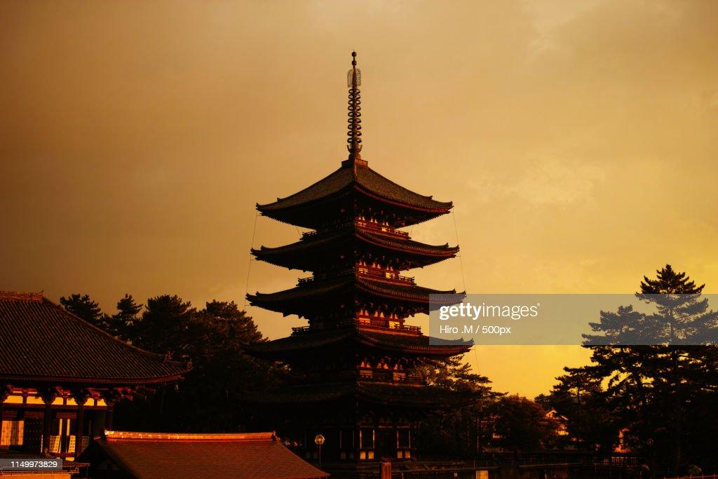 The Pagoda : ストックフォト