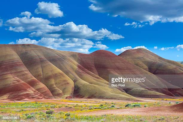 the painted hills, near mitchell, oregon - john day fossil beds national park stock pictures, royalty-free photos & images