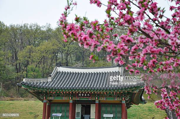 CONTENT] The Palace of the Goryeo dynasty is the place where Kings of Goryeo stayed for 39 years and since the invasion of the Mongolians at the end...
