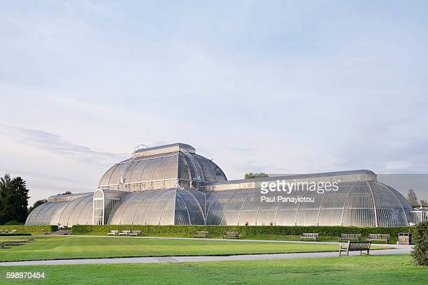 the palm house at kew gardens, london, uk - unesco world heritage site stock pictures, royalty-free photos & images