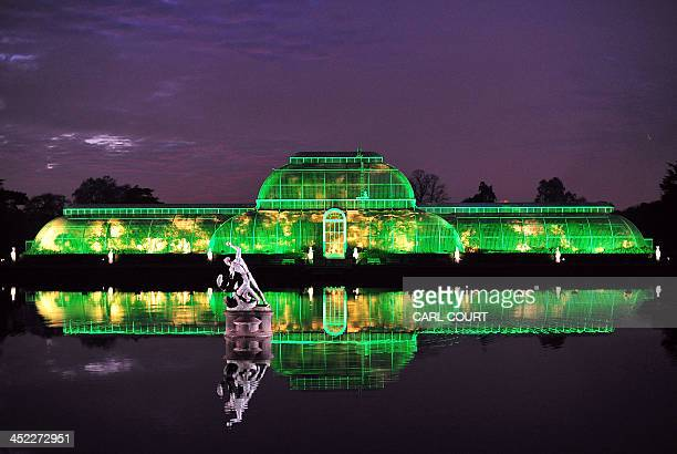 The Palm House at Kew Royal Botanical Gardens is lit green during a preview for the Christmas at Kew event at Kew Gardens in south west London on...