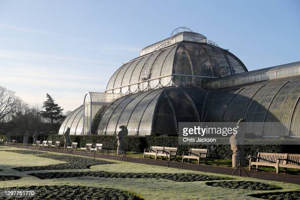 The Palm House at The Royal Botanic Garden's Kew on January 22, 2021 in London, England. Visitors are still allowed to visit Kew Gardens during the...