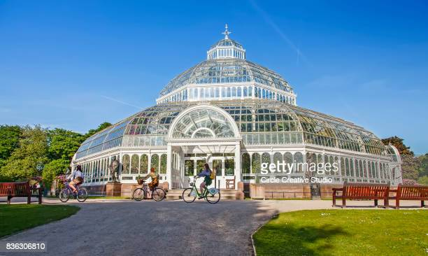 the palm house in sefton park, liverpool - liverpool england stock photos and pictures