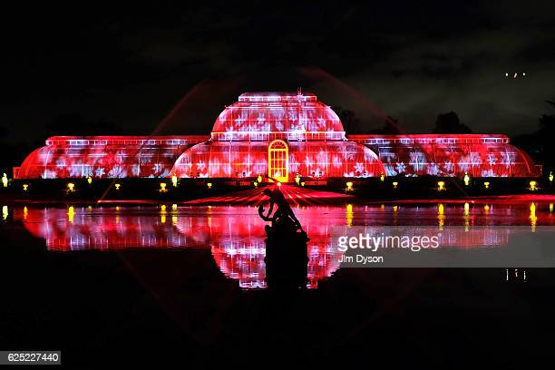 The Palm House is illuminated as Kew Gardens launch their festive illuminated trail on November 22 2016 in London England The worldfamous Royal...