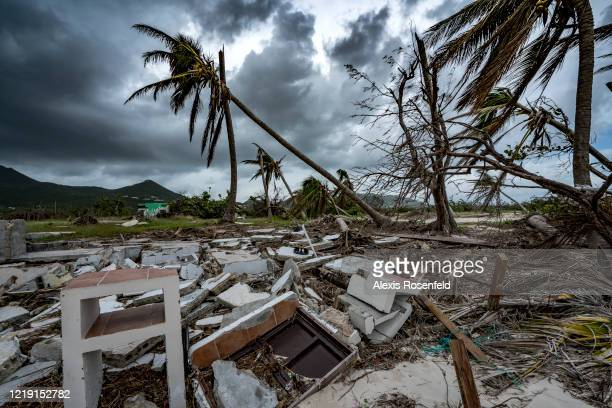 The palm trees on the beaches are devastated, they could not resist the power of Hurricane Irma on November 08 Saint-Martin, French Antilles. Several...