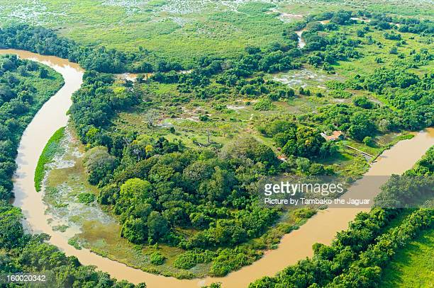 The Pantanal seen from the sky III