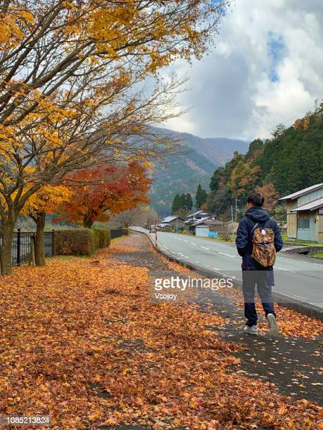 the park at miyama, kyoto, japan - vsojoy stock pictures, royalty-free photos & images