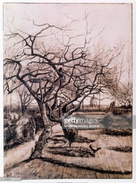 The Parsonage Garden at Nuenen in Winter Painted by Vincent Van Gogh was a Dutch PostImpressionist painter