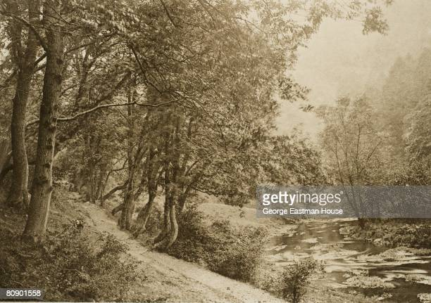 The Path Over the First Brae Dove Dale View of a trail by the banks of the river Bankart George English 01/01/1887