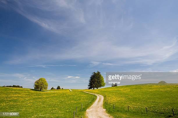 Der path