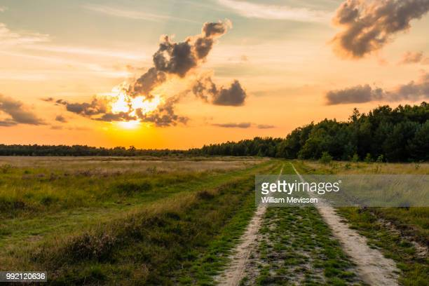 the path - william mevissen stock pictures, royalty-free photos & images