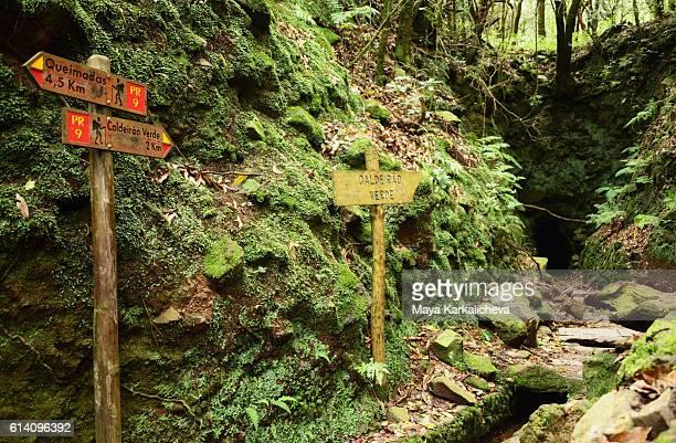The path to Calderao Verde