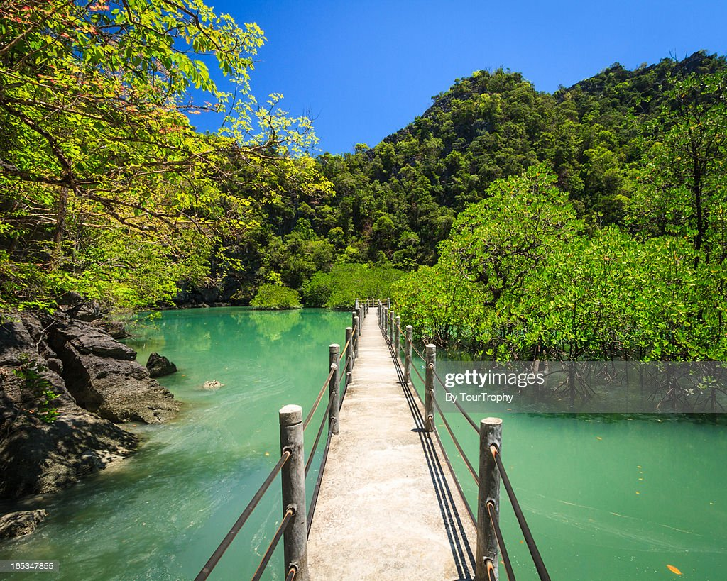 The Path To Paradise : Stock Photo