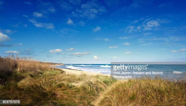 the path to the ocean at montauk, long island - long island stock pictures, royalty-free photos & images