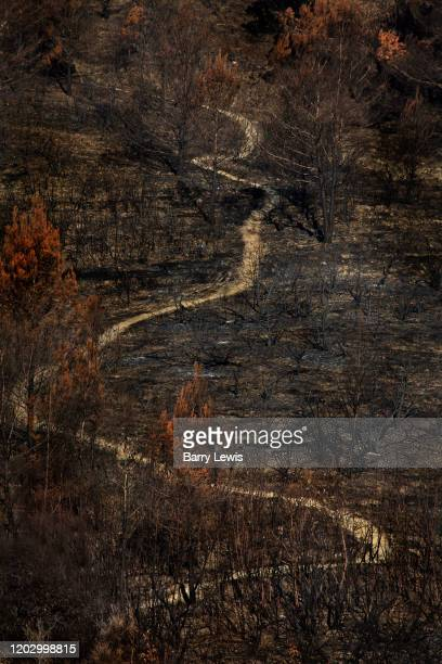 The pathway normally hidden through a wood revealed after a large fire on 4th August 2019 near the village of Monze France The woodland are very...