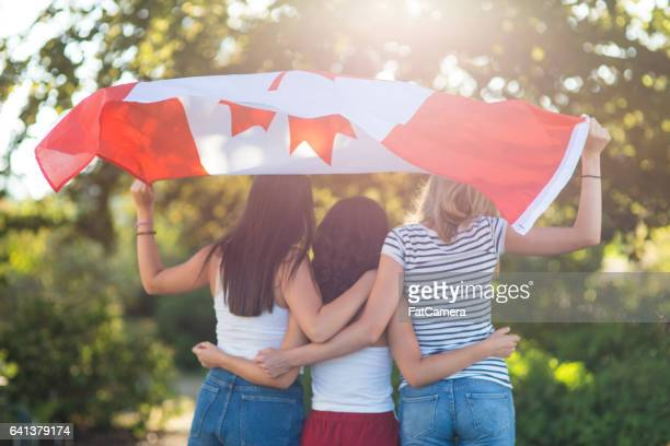 the patriots - canadian flag stock pictures, royalty-free photos & images