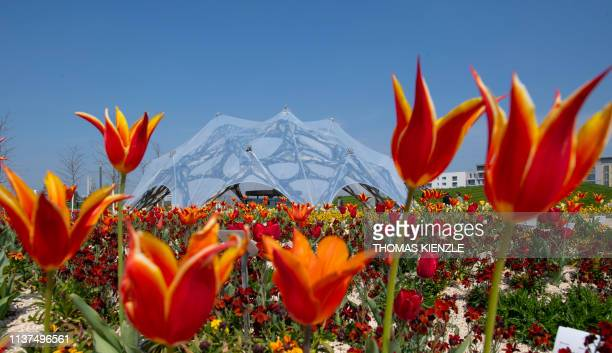 The pavillion of BadenWuerttemberg federal state is seen behind blooming flowers during the Federal Horticultural Show in Heilbronn southern Germany...