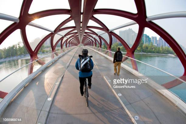 the peace bridge in calgary, alberta, canada - bow river stock pictures, royalty-free photos & images