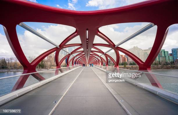 the peace bridge in calgary - calgary stock pictures, royalty-free photos & images