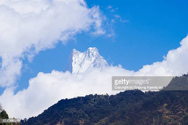 the peak of macchapuchhre from ulleri village - machapuchare stock photos and pictures