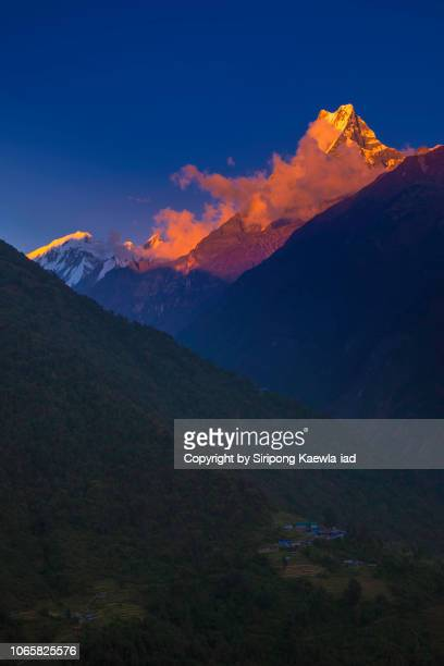 the peak of machhapuchhre (fish tail) at sunset in chhomrong village, nepal. - machapuchare stock photos and pictures