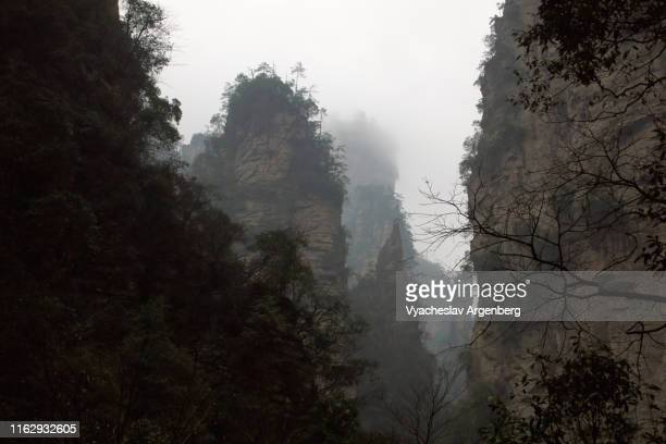 the peaks of wulingyuan, world of pandora, hunan, china - pandora peaks stock photos and pictures