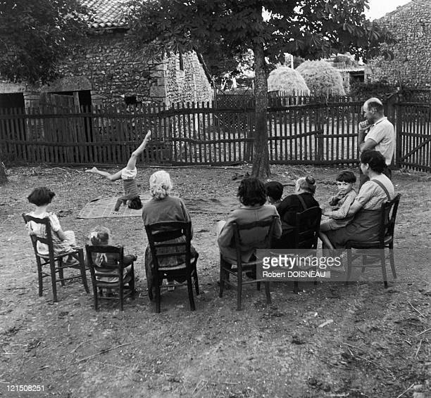 The Pear Tree Poitou 1952