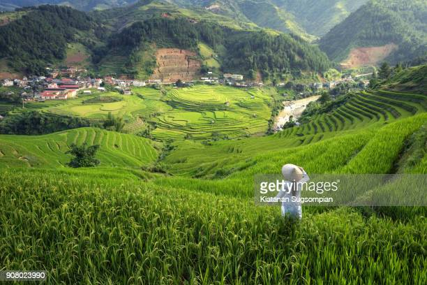 the pearl of north vietnam - vietnam stock pictures, royalty-free photos & images