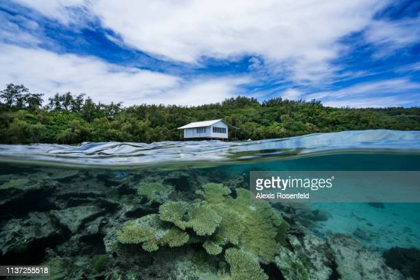 The pearl oyster farm on the edge of the Rikitea lagoon, on January 15, 2019 in Rikitea, French Polynesia. The Gambiers are a high place of pearl...