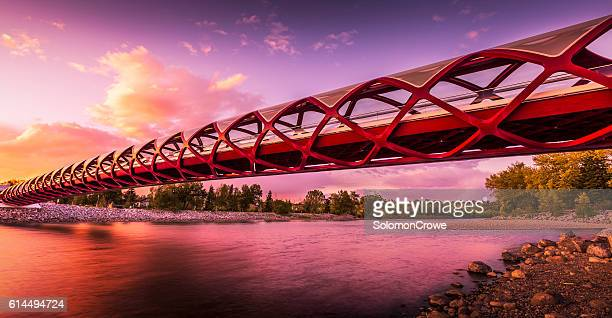 the pedestrian and cyclist peace bridge, calgary, alberta, canada - calgary stock pictures, royalty-free photos & images