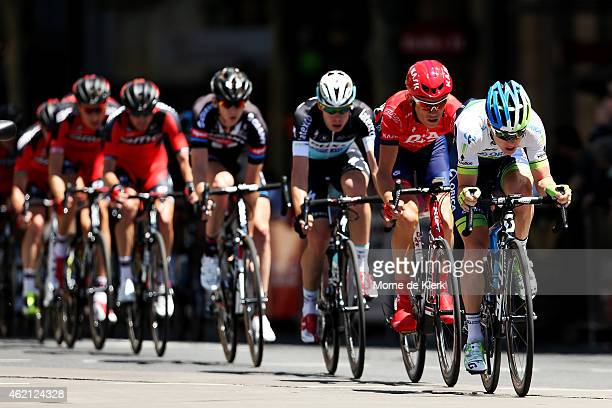 The peleton rides through Adelaide during Stage 6 of the 2015 Santos Tour Down Under on January 25 2015 in Adelaide Australia