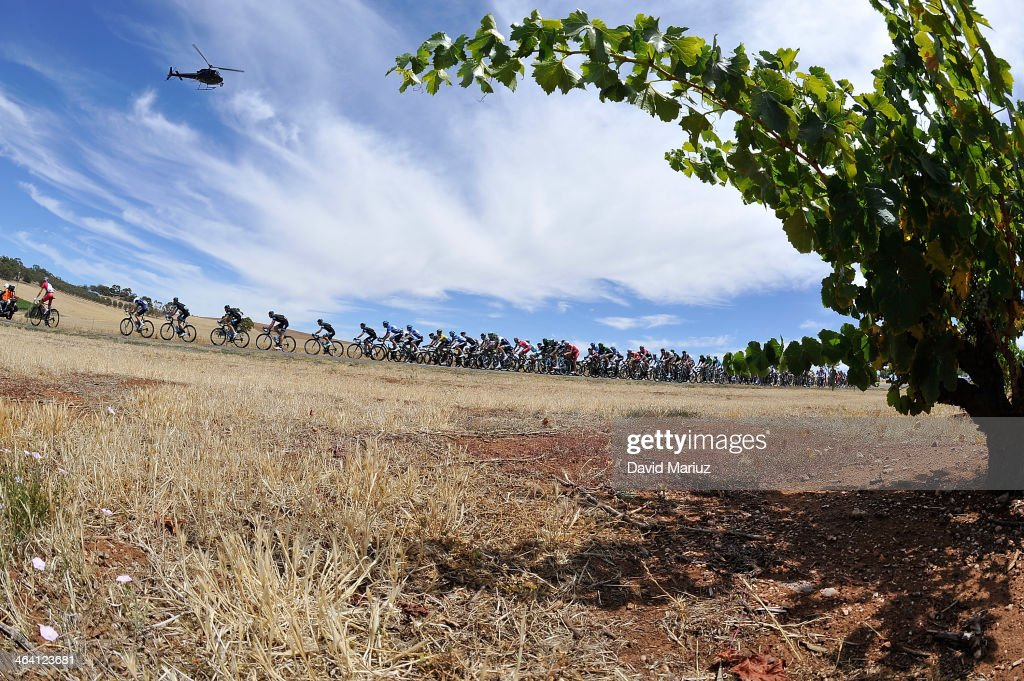 The Peleton wind its way through the Barossa Valley during day two of the Tour Down Under on January 21, 2014 in Adelaide, Australia.