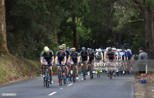 The peloton climbs during stage four of the 2017 Herald Sun Tour cycling race in Melbourne on February 5 2017 / AFP / Mal Fairclough / IMAGE...