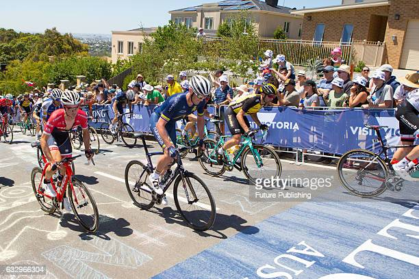 The peloton climbs towards the KOM marker at Montpellier Park during the Mens Elite Race in the 2017 Cadel Evans Great Ocean Road Race on January 29...