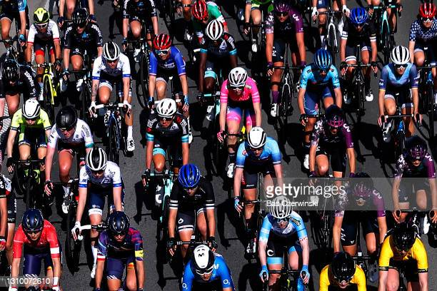 The peloton during the 9th Dwars door Vlaanderen 2021, Women's Elite a 122,2km race from Waregem to Waregem / Detail view / Landscape / #DDV21 /...