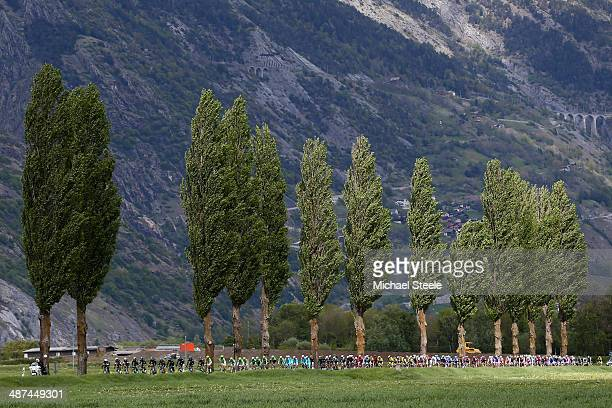 The peloton during the shortened stage one of the Tour de Romandie from Ascona to Sion on April 30 2014 in Sion Switzerland