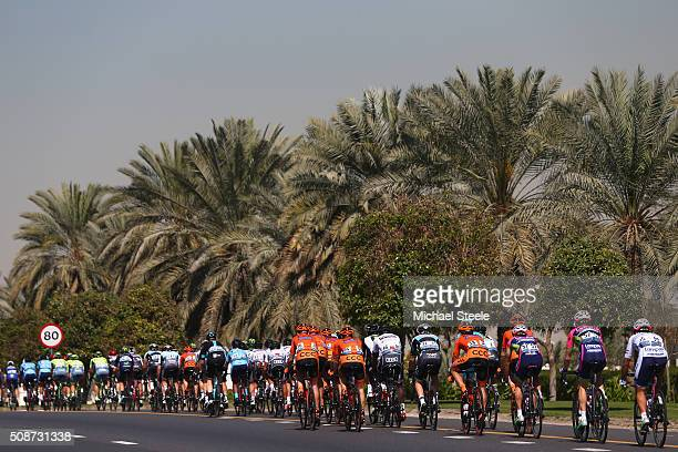 The peloton head down a palm tree lined avenue during the Business Bay Stage Four of the Tour of Dubai on February 6 2016 in Dubai United Arab...