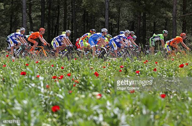 The peloton make their way through the Eagean resorty city of Mugla's countryside during the 5th stage of the 50th Presidential Cycling Tour a 183 km...