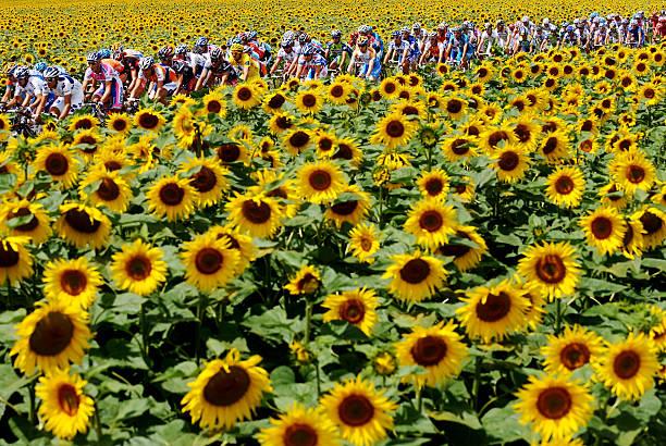 Tour de France 2009 Stage Eleven