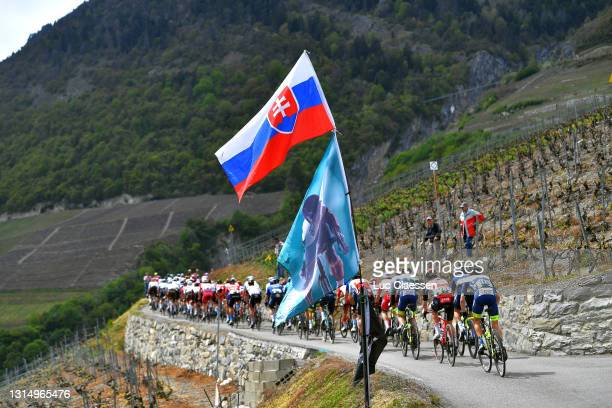 The peloton passing through vineyard landscape during the 74th Tour De Romandie 2021, Stage 1 a 168,1km stage from Aigle to Martigny / Slovenian flag...