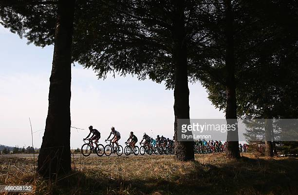 The peloton ride during stage five of the Paris Nice cycling race between SaintEtienne and Rasteau on March 13 2015 in Rasteau France