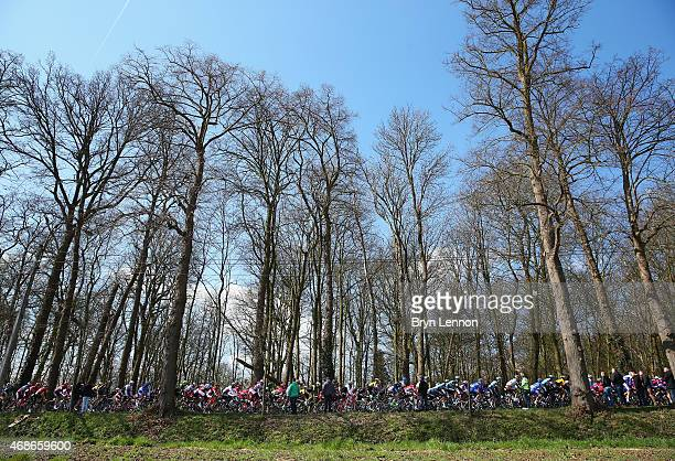 The peloton ride during the 2015 Tour of Flanders from Bruges to Oudenaarde on April 5 2015 in Oudenaarde Belgium