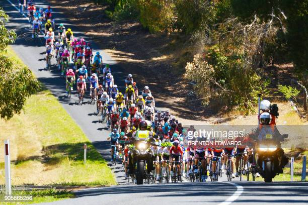TOPSHOT The peloton rides through a dip in the road on the second day of the Tour Down Under cycling race in Adelaide on January 17 2018 / AFP PHOTO...